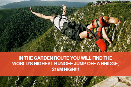 The highest: Bloukrans Bridge Bungy