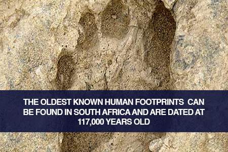 The 117 000-year-old Eve's Footprint